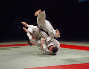 Judo © Piotr Sikora - Fotolia.com