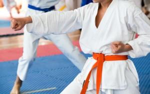 Karate © wellphoto - Fotolia.com